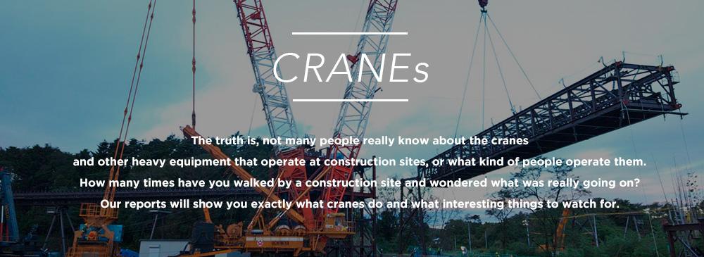 cranes_main_banner
