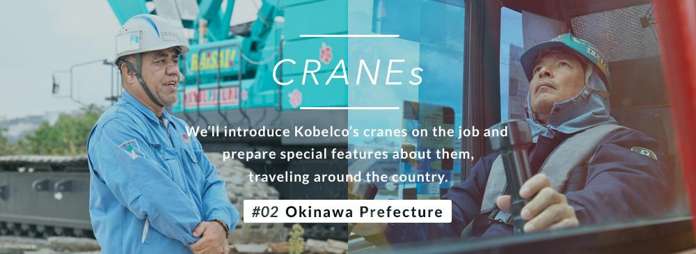 cranes_main_banner2
